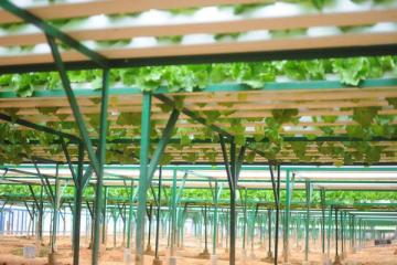 Kinh nghiệm mở cửa hàng vật tư nông nghiệp tham khảo