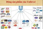 Unilever là gì? Các mặt hàng và sản phẩm của Unilever phân phối tại Việt Nam
